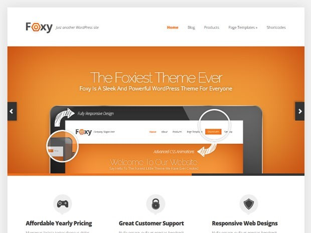 Foxy Theme sample from ElegantThemes.com