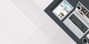 Web Development Online Marketing and Business