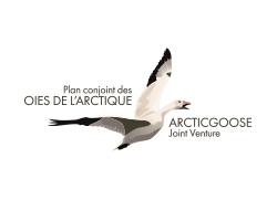 Arctic Goose Logo